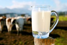 """Sometimes we struggle figuring out ways to use up raw milk. Could you do a post about what people can make with raw milk so it doesn't get wasted?"""