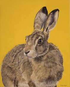 The wild hare - Emily Angus