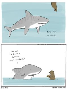 Shark attack by Liz Climo. Check her tumbler out: lizclimo. My new favourite cartoonist!