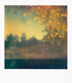 #landscape #unfocused #polaroid