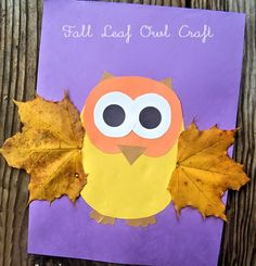 7 Fall Leaf Crafts for Kids: Fall Leaf Owl Craft Take advantage of fall's harvest and craft with your kids. These 7 leaf projects are so much fun to make and celebrate the autumn season. Owl Crafts Kids, Fall Crafts For Toddlers, Leaf Crafts, Daycare Crafts, Classroom Crafts, Animal Crafts, Autumn Crafts Kids, Kids Diy, Spring Crafts