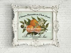 Vintage Fruit Graphic, French Oranges Digital Download, , Botanical Oranges, Digital Collage Sheet by FrenchPaperMoon on Etsy