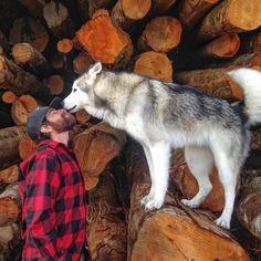 Я путешествую по миру со своим псом, потому что не могу видеть, как собак запирают дома