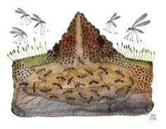 Ant Hill original watercolor painting