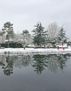 Lake Zurich, Winter Time, Sustainability, Museum, Landscape, World, Design, Outdoor, Landscape Diagram