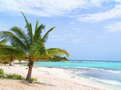 Beauitful Paamul beach