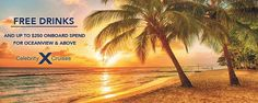 SUSU Scenic Beach Sunset Photography Backdrops Sea Scene Background with Palm Tree Photo Studio Art Plage, Beach Sunset Photography, Romantic Photography, Stunning Photography, Travel Photography, Barbados Beaches, Tropical Beaches, Barbados Travel, Tropical Vibes