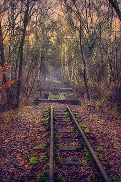Forgotten TrAck by Dirk Voigt Abandoned Train, Abandoned Buildings, Abandoned Places, Level Design, Train Art, Old Trains, All Nature, Train Tracks, Beautiful Landscapes