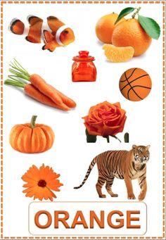 Fiches Couleurs orange