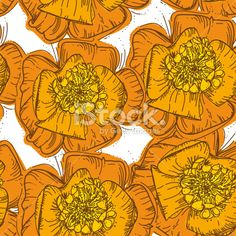 Abstract Elegance Seamless pattern orange flowers with brown contour. vector Royalty Free Stock Vector Art Illustration