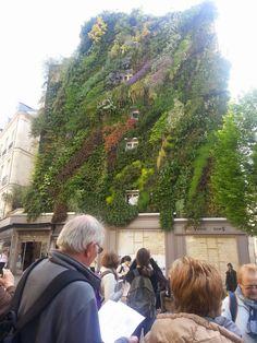 Flavour of the Minute The Minute, Dolores Park, Paris, Garden, Travel, Patrick Blanc, Montmartre Paris, Garten, Viajes