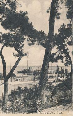 Carte postales anciennes Arcachon