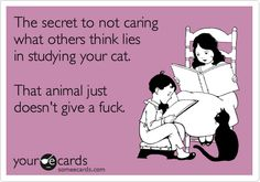 The secret to not caring what others think lies in studying your cat. That animal just doesn't give a fuck.