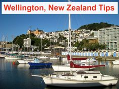 Insider Tips - What to Do in Wellington, New Zealand