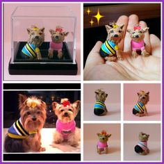 3D miniature Yorkshire Terrier dogs.