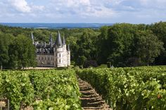 Fairytale Chateau Nozet in the Loire Valley in France #FairytaleCastle #Vineyards www.bcfw.co.uk Wine Merchant, Fairytale Castle, French Wine, North Yorkshire, Vineyard, Jet, Beautiful Places, France, Travel