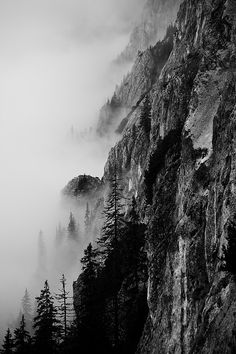 black and white nature photography for where?
