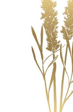 Gold Wall Art, Gold Art, Framed Wallpaper, Wallpaper Backgrounds, Wallpapers, Ink Illustrations, Illustration Art, Botanical Wall Art, Botanical Prints