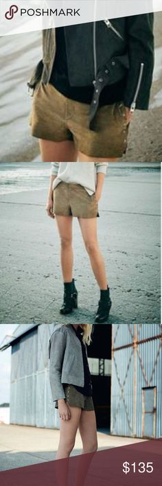 AllSaints Studded Suede Shorts Cool studded suede shorts. Brand new with it's tag. All Saints Shorts