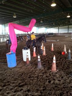 Dancing windsock horse obstacle