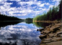 In Arizona, Knoll Lake and Woods Canyon Lake up on the Mogollon Rim, were camping and hiking destinations.