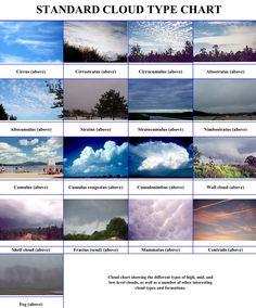 Worksheet Cloud Types Chart