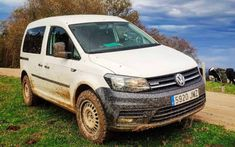 Volkswagen Caddy, Vw T, Caddy Van, Vw Caddy Maxi, Camper Conversion, Lift Kits, The Struts, Van Life, Caravan