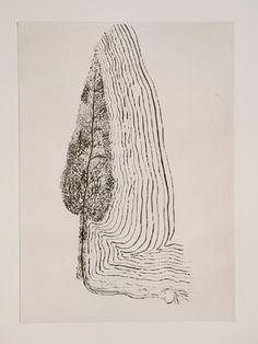 Giuseppe Penone, Musical transcription of the structure of trees, 2012 – etching on paper six etchings 65 x 50 cm