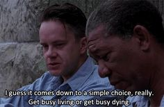 """I guess it comes down to a simple choice, really. Get busy living or get busy dying.""       -Shawshank Redemption"