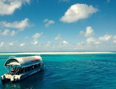 #RTW - Day 18: Another adventure out to the Great Barrier Reef... This time to see the gorgeous Michaelmas Cay. by stace_aroundtheworld http://ift.tt/1UokkV2