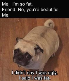 Now I know I'm also ugly