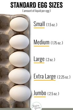 Egg sizes range from small to jumbo and the larger they are, the more liquid they contain. There are also various colors availble from different chickens. Different Breeds Of Chickens, Types Of Chickens, Raising Chickens, Raising Ducks, Fresh Chicken, Chicken Eggs, Chicken Egg Colors, Farm Chicken, Chicken Coops