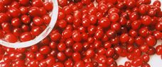Great tip. Bought cranberries have so much sugar added to them. How to dry cranberries. Submerge in boiling water until skins pop, freeze for 2 hrs, put them in a 350 degree oven for 10 mins and then turn off the heat and leave them overnight. Perfect for a healthy holiday snack, or to toss into stove-top potpourri.