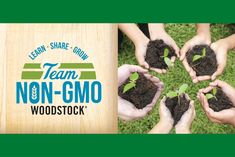 In the United States, 80% of processed food is likely to be genetically modified, and not everyone is sure how to identify which foods are genetically modified organisms (GMOs) and which are not. This May, co-ops are teaming up with Woodstock to help raise awareness about GMOs through their Learn, Share and Grow Non-GMO initiative. They're building teams; teams of farmers, retailers and citizens. Together, we can make a difference.
