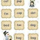 Your students will have fun as they play this snowy picture-word match rhyming game. It is appropriate for preschool, kindergarten, first grade and...