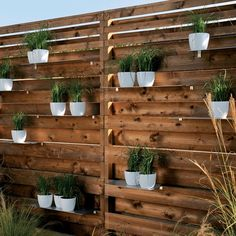 Seasonal pots outside. To define a particular living area, there's a wonderfully simple slatted wood screening system that accepts narrow shelves for planters.