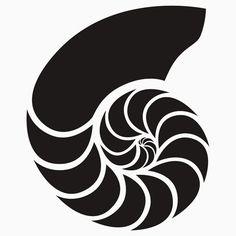 nautilus shell silhouette - Google Search