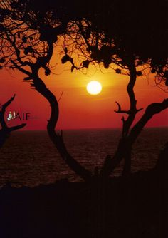 tramonto sull'isolotto