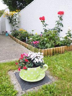 My cottage garden | The dainty dress diaries