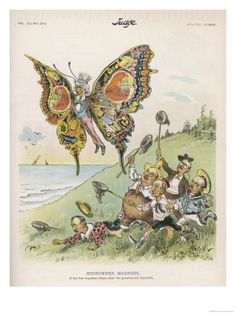Uncle Sam butterfly