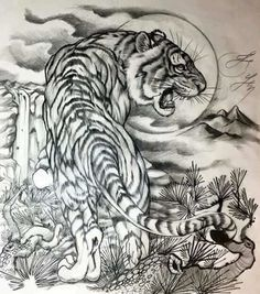 asian-tiger-tattoo-design-jailbait-lying-down