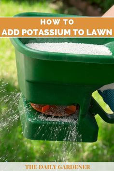 How to Add Potassium to Your Lawn? - The Daily Gardener Potassium Sulfate, Potassium Deficiency, Grass Fertilizer, Organic Fertilizer, Compost Tumbler, Growing Grass, Magnesium Supplements, Non Organic, Lawn Sign