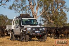 Forget the little Jeeps and preppy Land Rovers - this is the real deal, aToyota Landcruiser 79 Series Dual Cab Chassis