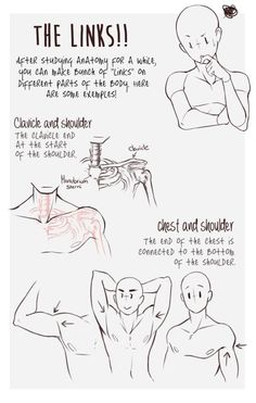 """drawing tips keiid: """"Just some tips. ( ´ ▽ ` )ノ """" - Discover more about Drawing tips for beginners Click the link to find out more. Drawing is relatively very simple and an easy skill and is Body and bones guide Archive of Art and Pose Ref Drawing Reference Poses, Anatomy Reference, Drawing Poses, Drawing Tips, Drawing Stuff, Anatomy Drawing, Anatomy Art, Body Drawing, Manga Drawing"""