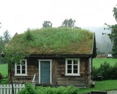 Someday the roof of our wee little shed will look like this…if we're lucky.