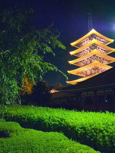 Tokyo Asakusa Japan.I want to go see this place one day.Please check out my website thanks. www.photopix.co.nz