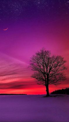 http://www.greeneratravel.com/ Cambodia Tours - ✯ Purple and Pink Sunset