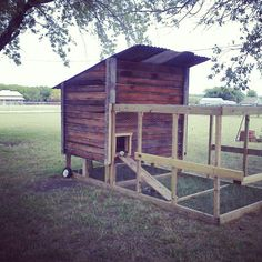 Portable chicken coop on the barefoot five farm