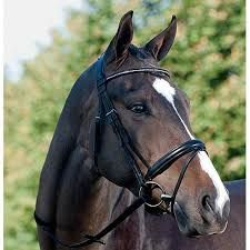 This flat double bridle from Passier's Basic Line is particularly horse-friendly. This is because the Fortuna Double Bridle has innovative, elastic inserts, optically concealed on both sides through t