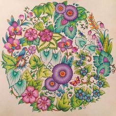 Jungle Coloring Pages, Adult Coloring Book Pages, Coloring Book Art, Colouring Pages, Lost Ocean, Magical Jungle Johanna Basford, Johanna Basford Secret Garden, Colored Pencil Tutorial, Secret Garden Coloring Book